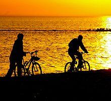 cyclists by Cheryl Ribeiro