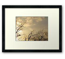 Grasping at light Framed Print