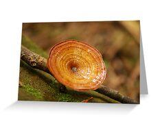 Fungus Greeting Card