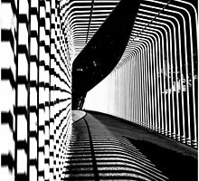 Lines and Shadows by threewisefrogs