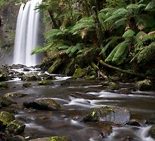 Hopetoun Falls-Otway National Park. 2010 by John  Kowalski