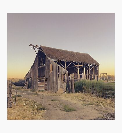 Rustic collapsing barn at sunset Photographic Print