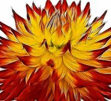Fireglow by BizziLizzy