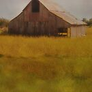 Iowa Barn in October by Jing3011