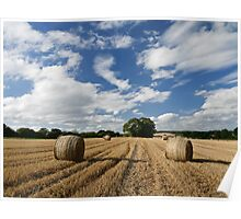 Harvested field Poster