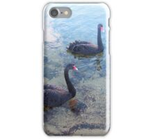 Swans Three July 2015 iPhone Case/Skin