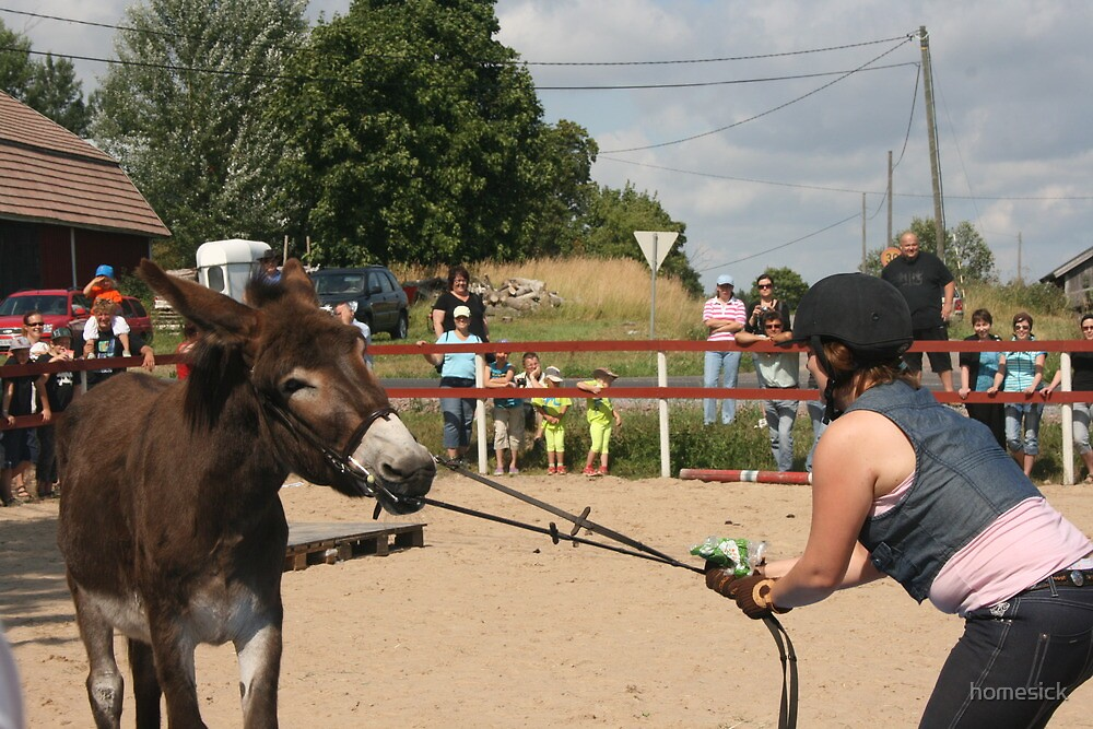 Aasipäivät ('Donkey weekend') in Inkoo, Finland #3 by homesick