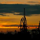 Silhouettes of cranes in the port by Dfilyagin