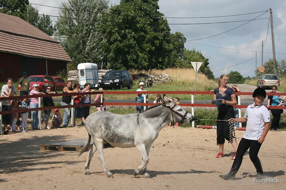 Aasipäivät ('Donkey weekend') in Inkoo, Finland #2 by homesick