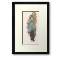 ⟁ v a n t   C o e u r - The Feather Framed Print