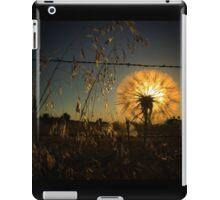 Illuminating dandelion at dusk iPad Case/Skin