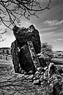 Kilmogue Portal Tomb, County Kilkenny, Ireland by Andrew Jones