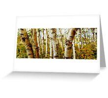 Nova Scotia Trees Greeting Card