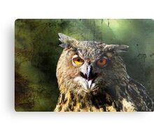 Manipulated Owl Metal Print