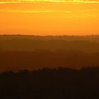 From Wold to Moor by nickspics