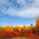 Autumn sky II by zumi
