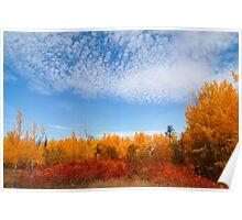 Autumn sky II Poster
