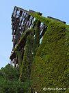 B&O Railroad Bridge #464 by Marcia Rubin