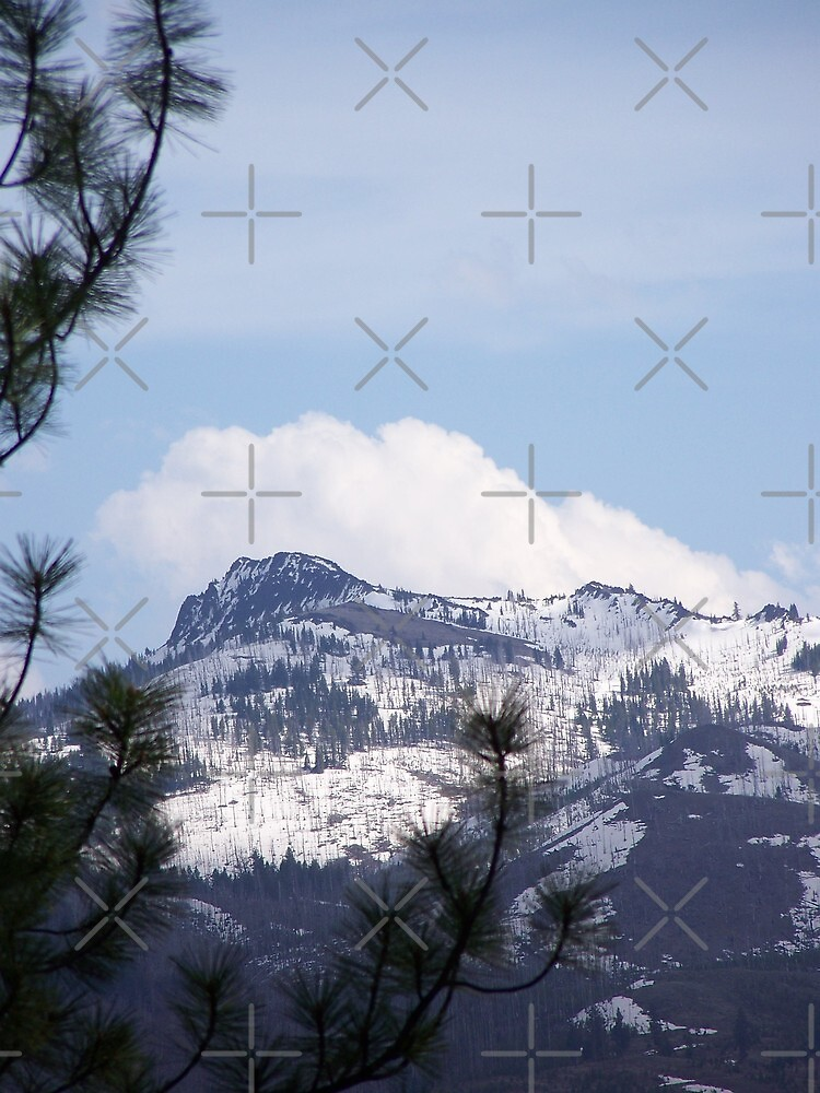 Monument Rock Wilderness in the Clouds by Betty  Town Duncan