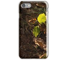 Forest Light iPhone Case/Skin