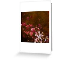 Cosmos - Seattle neighborhood Greeting Card