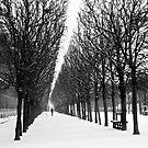 Morning Snowfall - Palais Royal by Virginia Kelser Jones