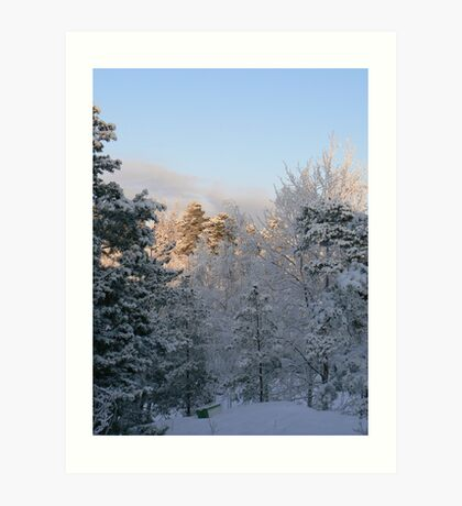 Sun Snow and Swedes Art Print
