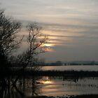 Yorkshire Wetlands by nickspics