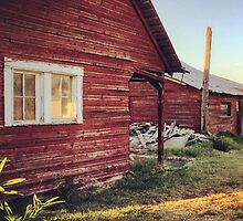 Rustic abandoned red cottage  by JULIENICOLEWEBB