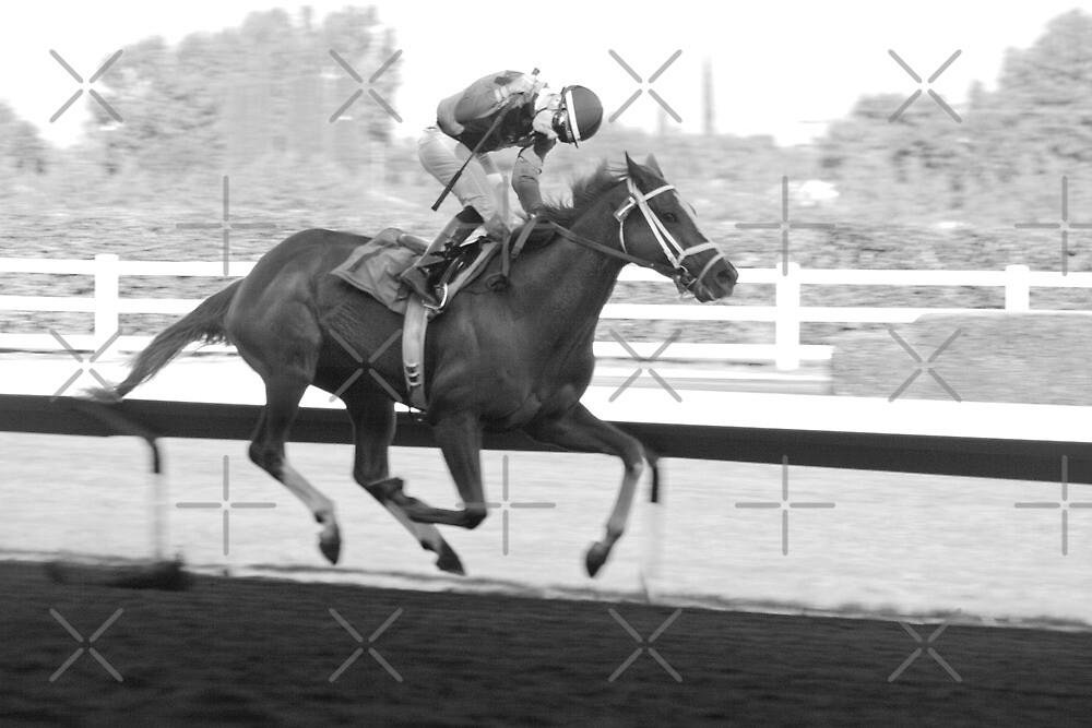 Winning Jockey Pumps His Fist  by Buckwhite