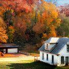 Autumn's Glory by Nadya Johnson