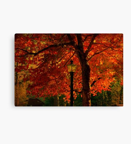 I'll  wait for you by the maple tree Canvas Print