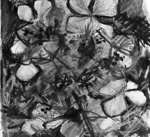 Lacecap Hydrangea by Visuddhi