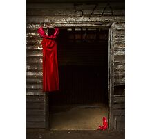 They can't order me to stop dreaming: Cinderella Photographic Print