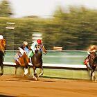 A Speeding Blur of Race Horses by Buckwhite