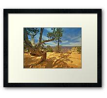 Nature`s Art Framed Print