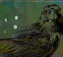 A Crow for Andy Warhol by Anne  McGinn