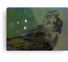 A Crow for Andy Warhol Metal Print