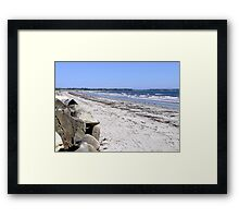 Crescent Beach, North-East Framed Print