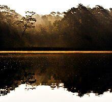 Cahooque Creek Shoreline at Sunrise by NCBobD