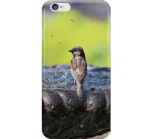 Park Bird iPhone Case/Skin