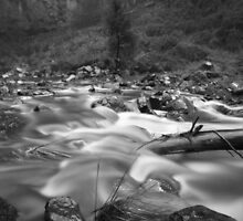 Coliban River by ShaneBooth