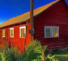 Bright red barn with rusty tin roof by JULIENICOLEWEBB