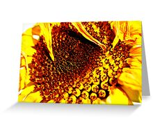 Each Seed tells a Different Story Greeting Card