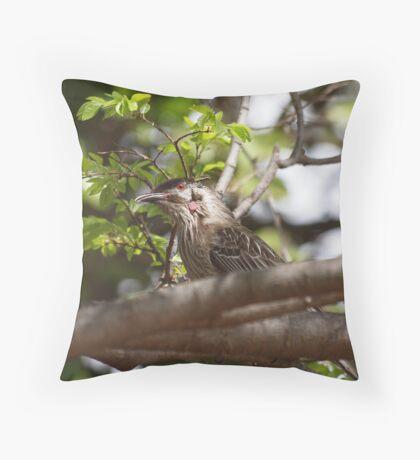 Red Wattle Bird.- Australia Throw Pillow