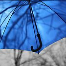 Blue by KirstyStewart