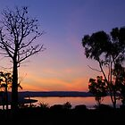 Kimberley Evenings by Natika
