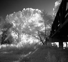 San Pedro Bridge by Isaac Daily