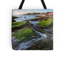 Rock Walker Tote Bag