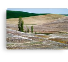 Palouse Landscape Canvas Print